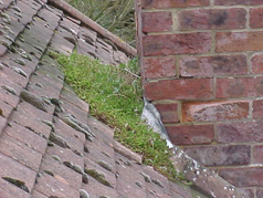 Our roof maintenance plan includes moss clearance and repairs to lead flashings and valleys.