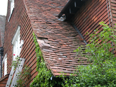 Our roof maintenance plan includes replacement of damaged and missing tiles